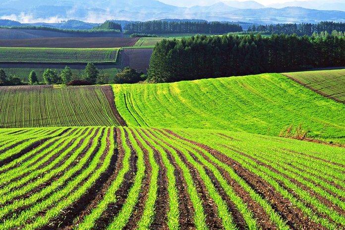 Характеристика земель сельхозназначения