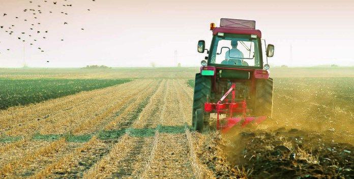 Кто может пользоваться сельскохозяйственными землями?