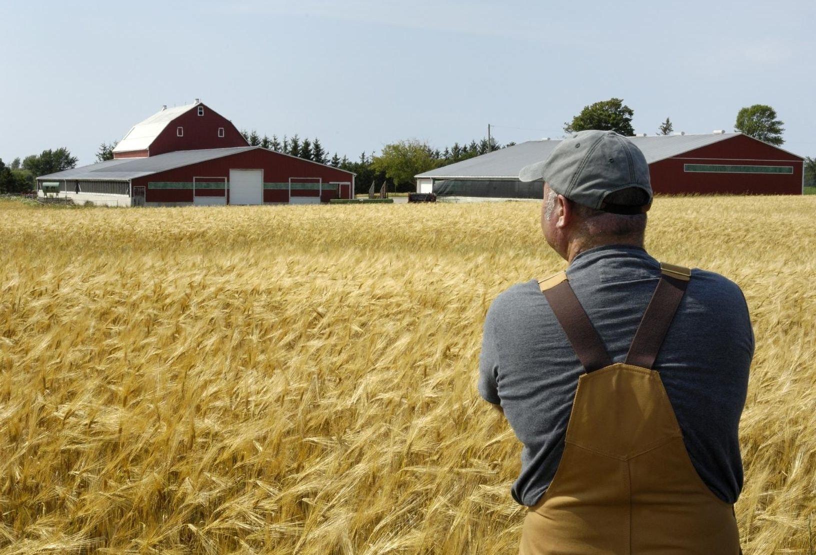 Земельные паи сельхозназначения. Что такое земельный пай и для чего он нужен
