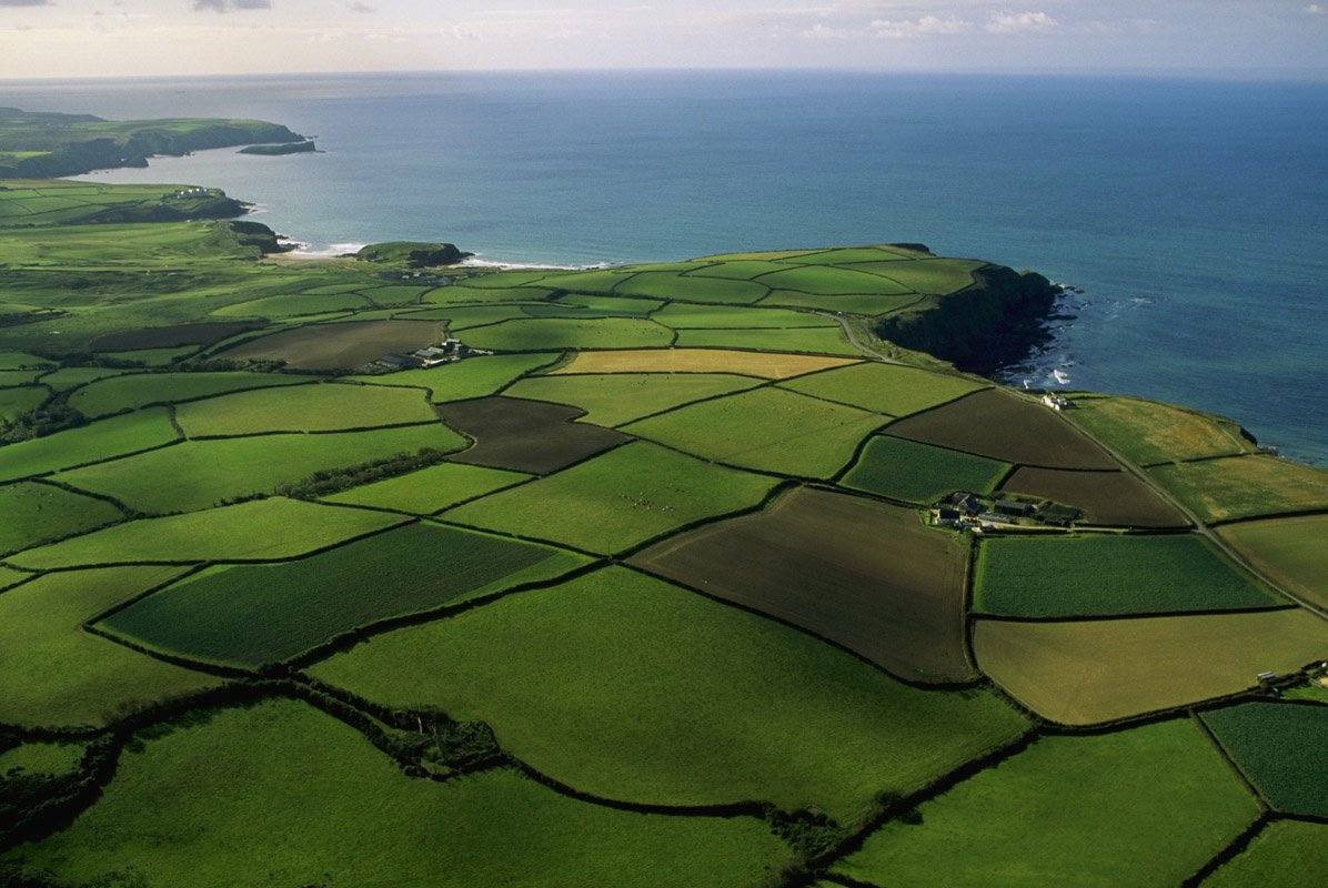 Снятие с кадастрового учета земельного участка со статусом временный