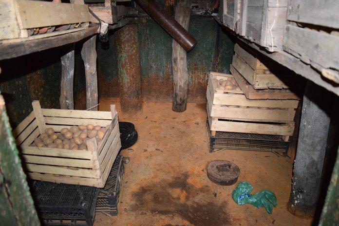 Испорченные продукты в подвале