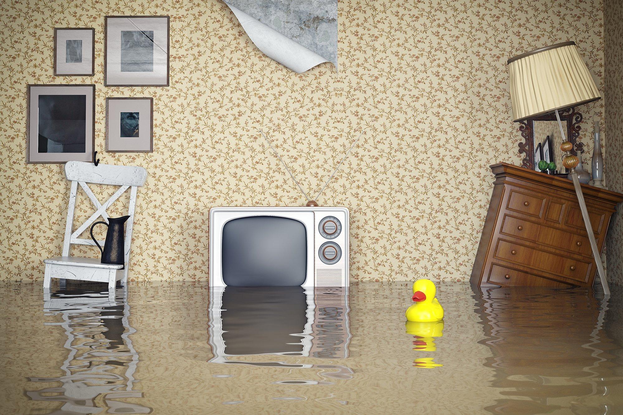 что делать если соседи затопили квартиру. Элвина